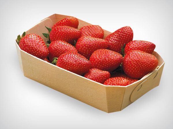 Лоток для овощей, фруктов, ягод