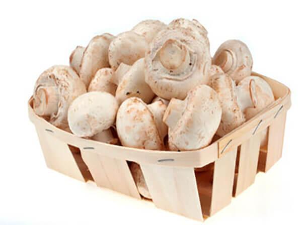 Корзины для грибов