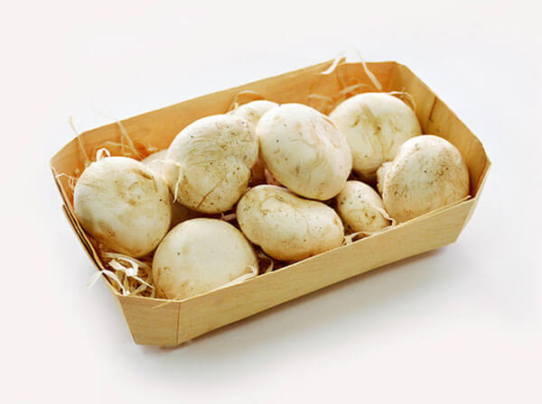 Лотки для грибов